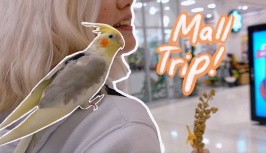 My Cockatiel Goes To The Mall!