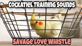 Cockatiel Training Sounds | Savage Love Whistle